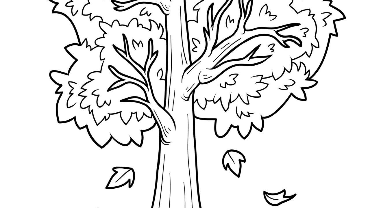 Dibujos Colorear Otono Infantil: Dibujos De Otoño Para Colorear