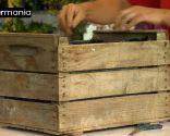 Crear composiciones florales con cajas de fruta - Paso 1