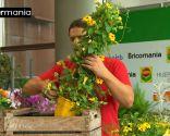 Crear composiciones florales con cajas de fruta - Paso 5
