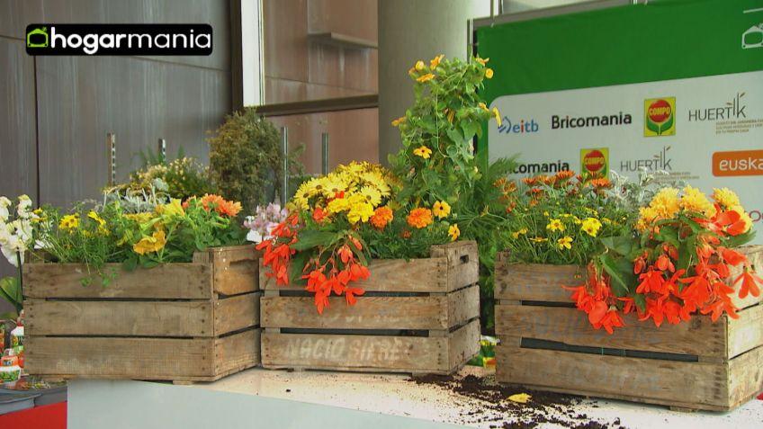 crear composiciones florales con cajas de fruta bricomana - Composiciones Florales