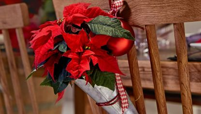 Decoraciones para sillas con mini poinsettias