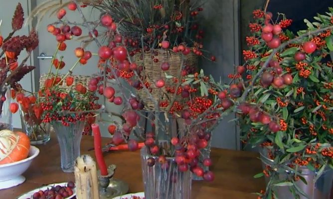 fotos de centros florales