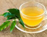 plantas perder peso - té verde