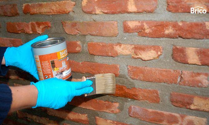 Proteger ladrillos de hongos y moho bricoman a for Como pintar un mural exterior