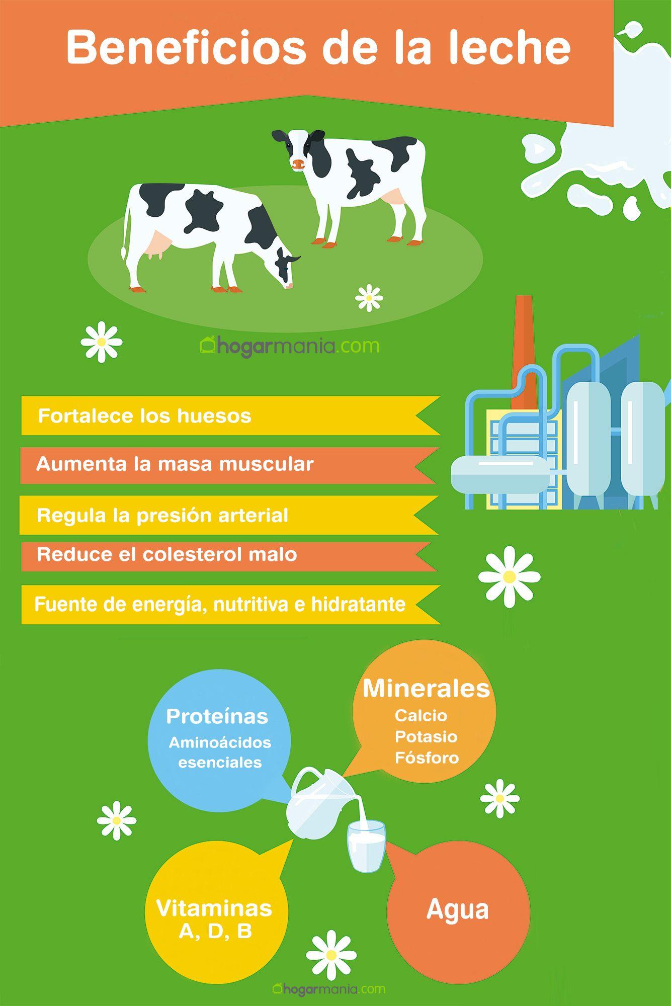 infografia consumo leche