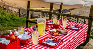 Ideas para decorar una mesa de picnic
