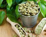 plantas control peso - café verde