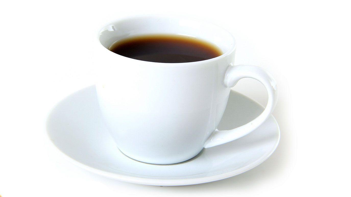 cafeína mascotas
