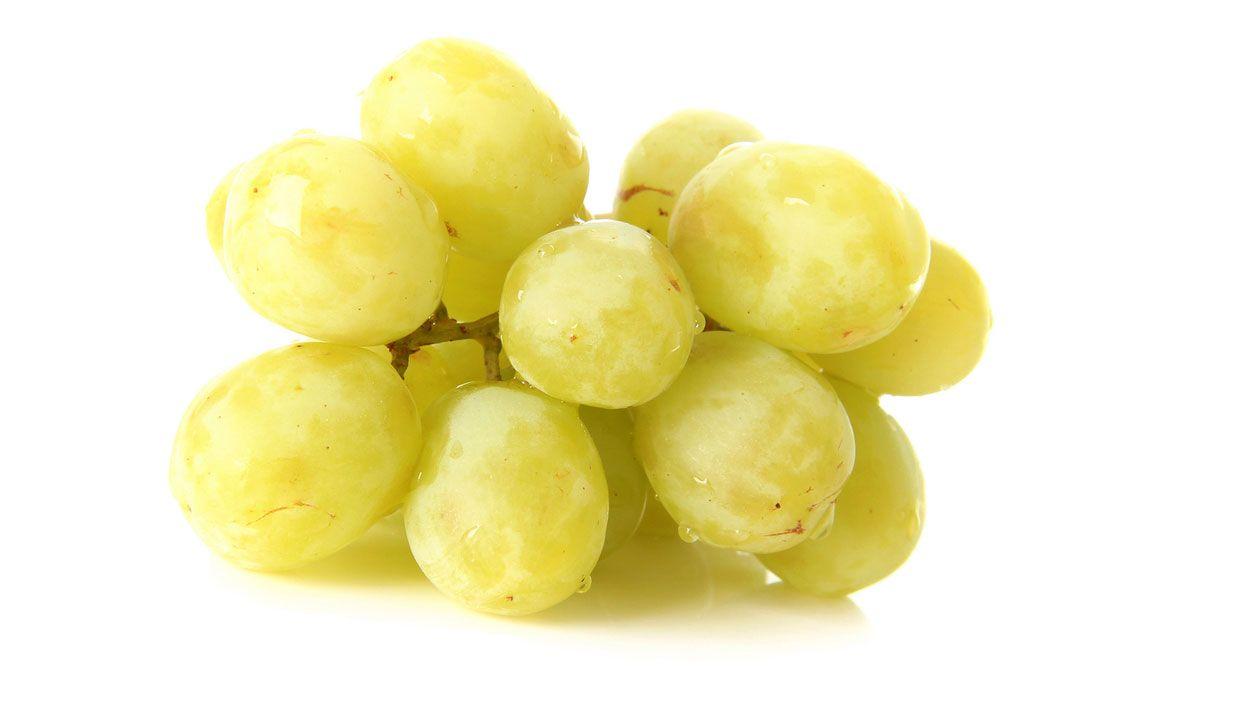 uvas mascotas
