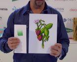 Técnica para crear ilustraciones con degradados - Paso 4