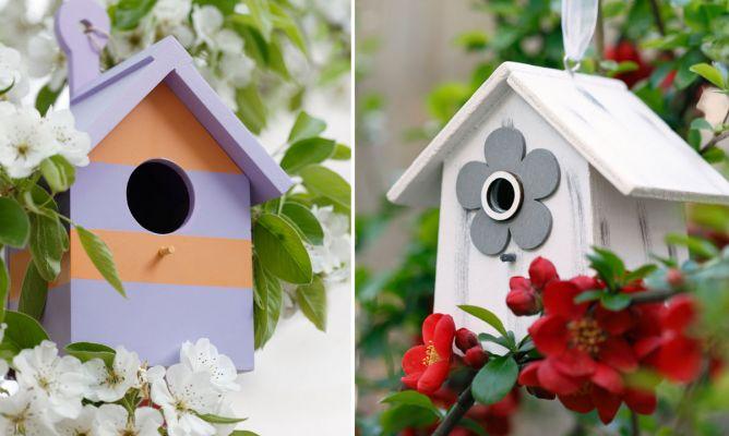 Casitas De Pájaros Para Decorar El Jardín En Los árboles