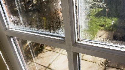 Limpiar humedad de la lavadora hogarmania - Manchas humedad pared ...