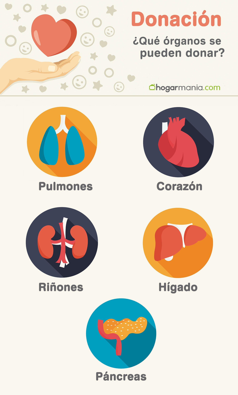 infografía salud donación órganos
