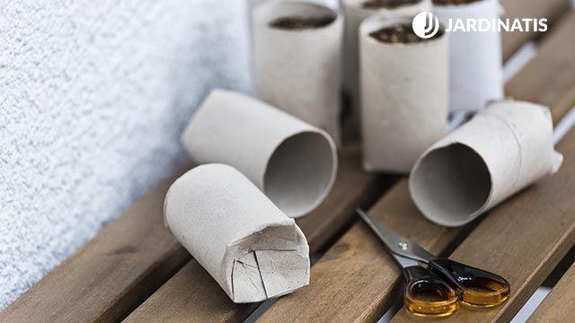 Semillero con cartón de papel higiénico