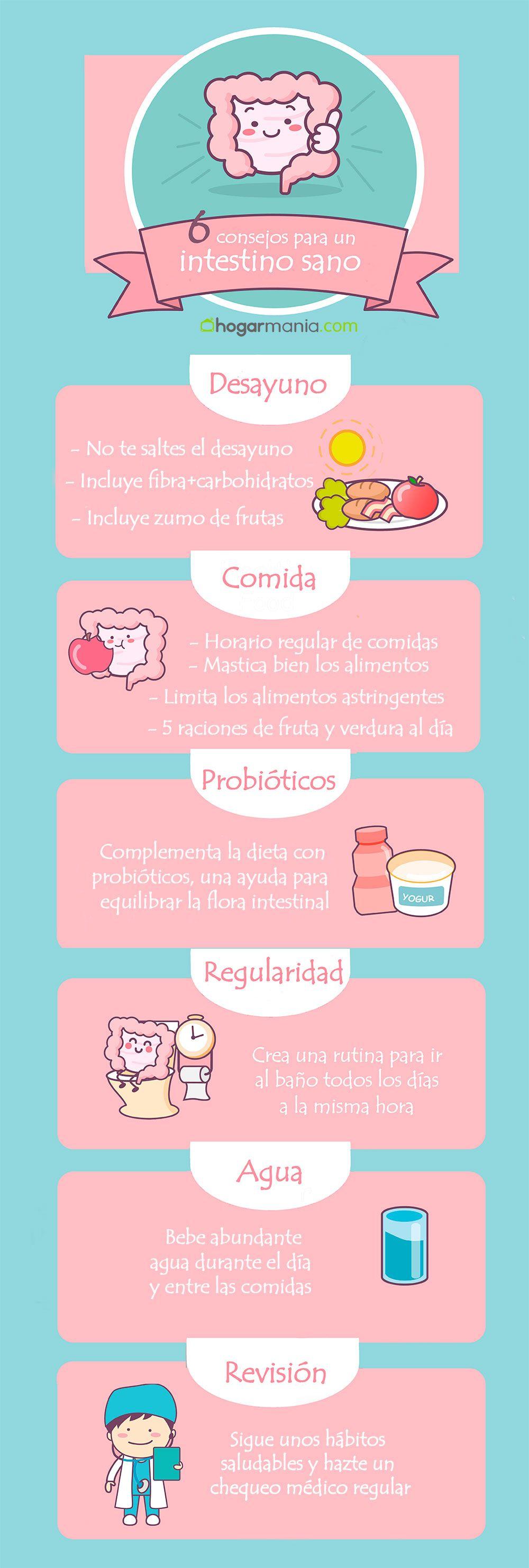 infografía salud intestino