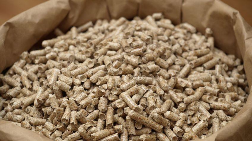 Resultado de imagen para pellets