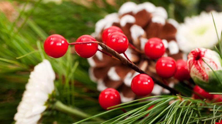 Ramos de Navidad - Hogarmania
