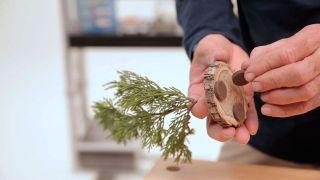 Cómo hacer un mini árbol navideño