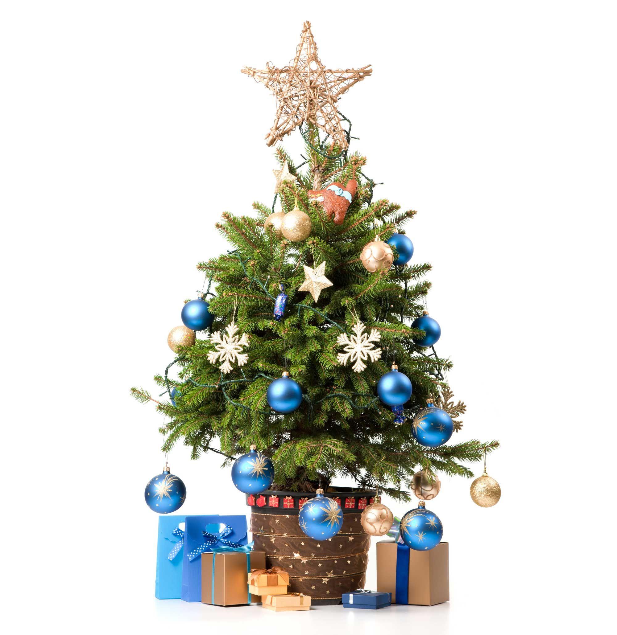 Ideas para decorar el pie del rbol de navidad hogarmania - Arbol de navidad para pared ...
