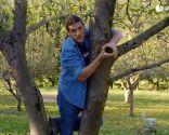 Cómo evitar que los árboles se pudran tras una poda de formación - Paso 1