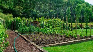 Aspersores para regar el jardín
