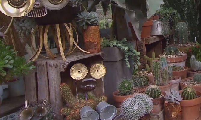 Variedades de cactus y su mantenimiento decogarden for Cactus variedades