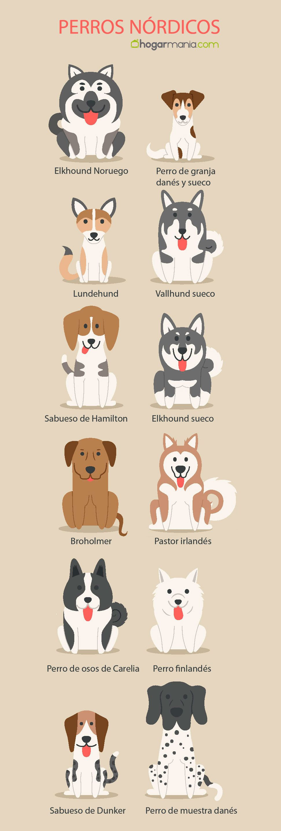 razas perros nórdicos