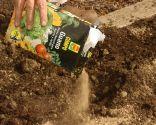 Cómo hacer un huerto de plantas ornamentales - Paso 2