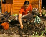 Cómo hacer un huerto de plantas ornamentales - Paso 3