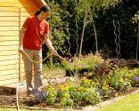 Cómo hacer un huerto de plantas ornamentales - Paso 9