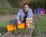 Materia orgánica y materiales para usar en el compost: alternar residuos secos con húmedos