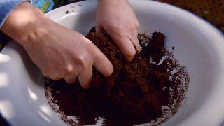 Cómo hacer un semillero de hortalizas - paso 3