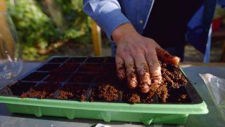 Cómo hacer un semillero
