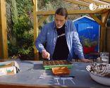 Cómo hacer un semillero de hortalizas - Paso 5
