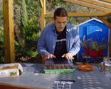 Cómo hacer un semillero de hortalizas - Paso 8