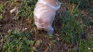 Abonar un árbol en invierno con abono en forma de clavos - Paso 3