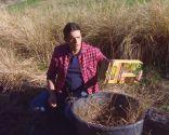 Plantas con tonos pajizos en invierno - Compost de paja paso 2