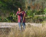 Plantas con tonos pajizos en invierno - Poda pennisetum