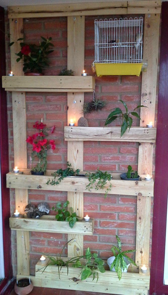 Ideas para hacer un jardín vertical