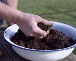 Cómo regenerar el césped después del invierno - Incorpoara materia orgánica