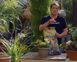 Tipos de abonos y su uso en jardinería - Abonos para la huerta
