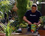 Tipos de abonos y su uso en jardinería - Abonos para el jardín