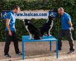 educación canina en positivo - Enrique Solis y Eliseo Rodríguez