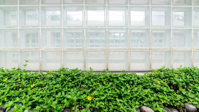 Limpiar muro de vidrio o pav s hogarmania - Paves vidrio ...