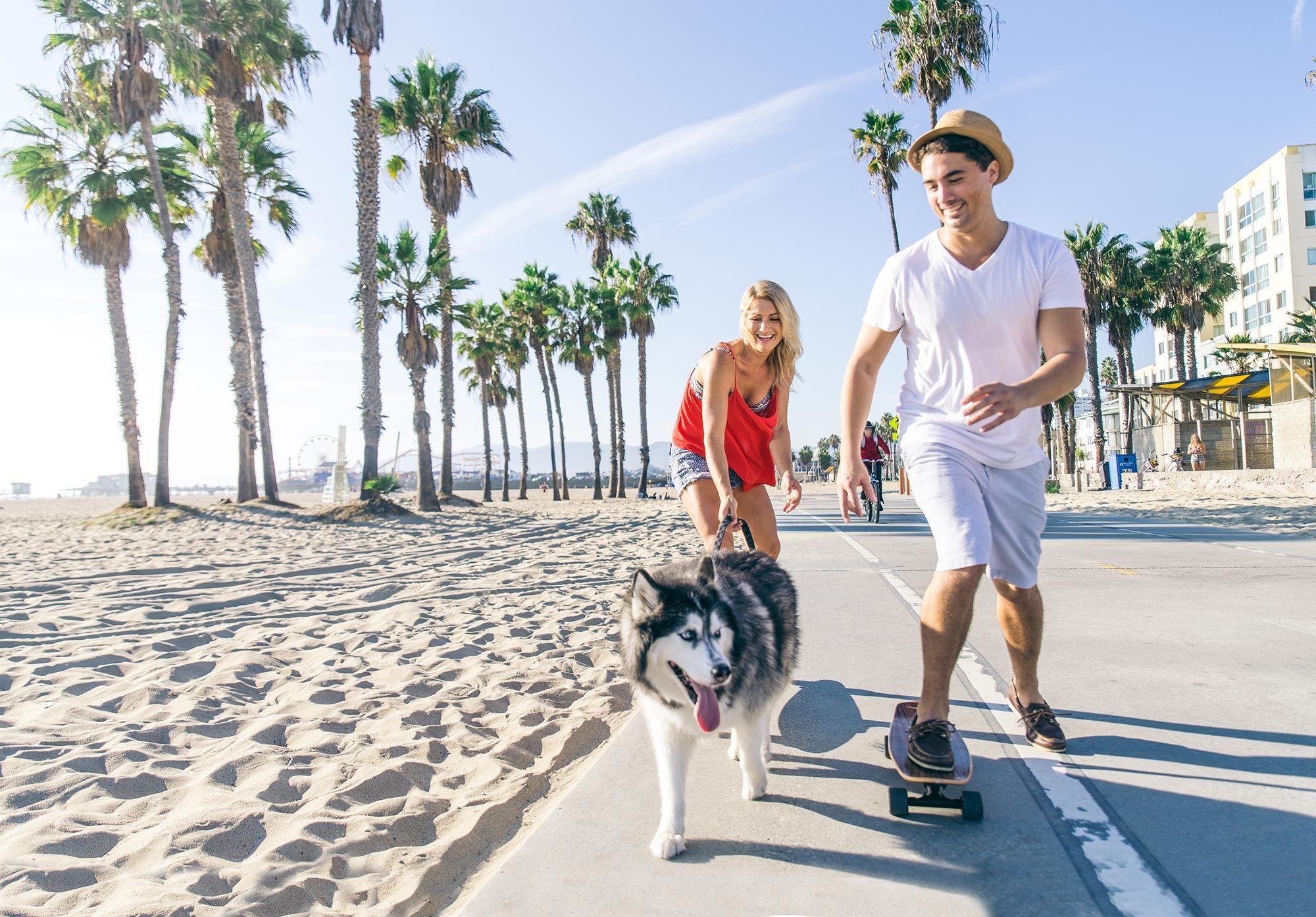 planes con perros en verano - deporte
