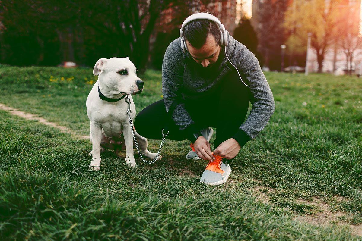 reducir estrés en perros