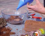 Cómo sanear un olivo -  Fibra de coco
