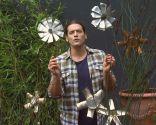 Restio planta rústica - Composición con flores metálicas