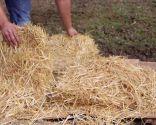 La permacultura - Paso 4