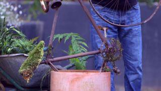 escultura vegetal con helechos y una bicicleta oxidada - paso 1